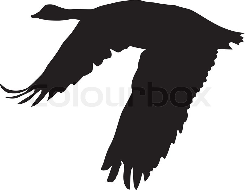 silhouette of flying goose stock vector colourbox