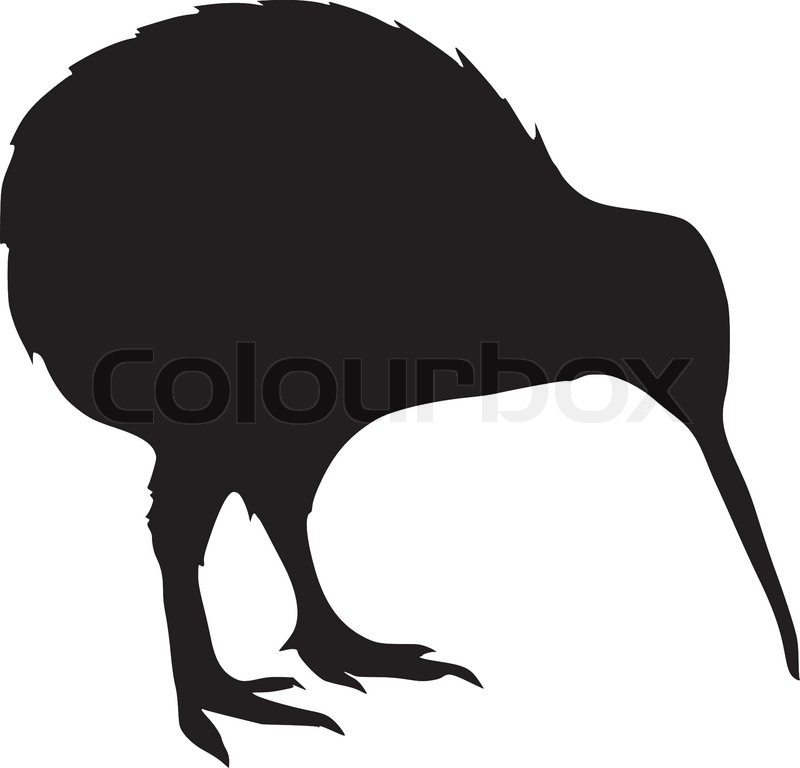 Kiwi Fruit Silhouette Silhouette of Kiwi Vector
