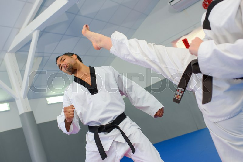Martial artists, stock photo