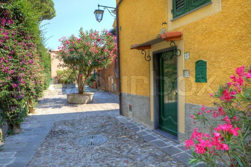 Lille gårdhave og gule hus med grøn trædør i portofino, italien ...