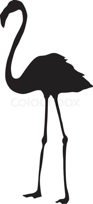 Flamingo Schwarz Weiß : flamingo vektorgrafik colourbox ~ Eleganceandgraceweddings.com Haus und Dekorationen