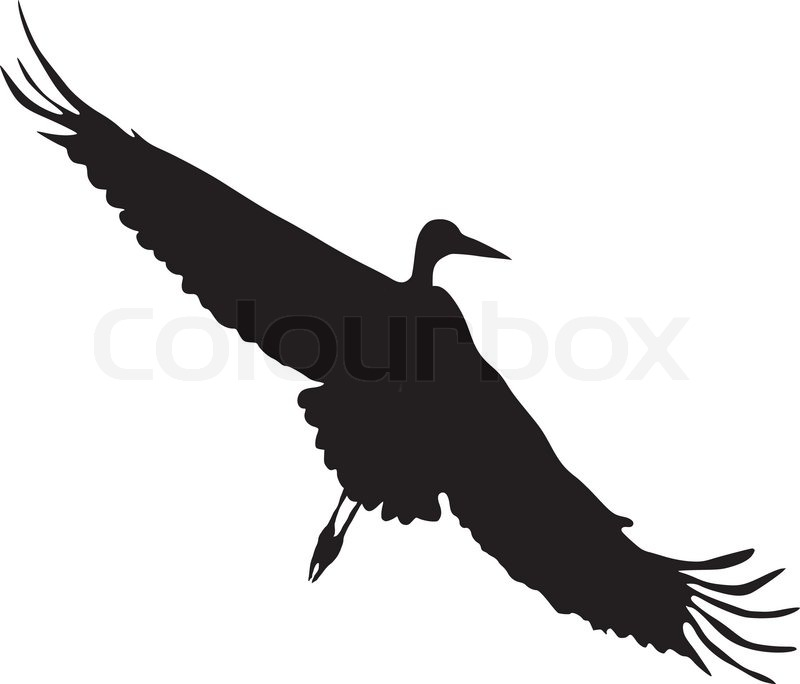 silhouette of flying stork stock vector colourbox. Black Bedroom Furniture Sets. Home Design Ideas