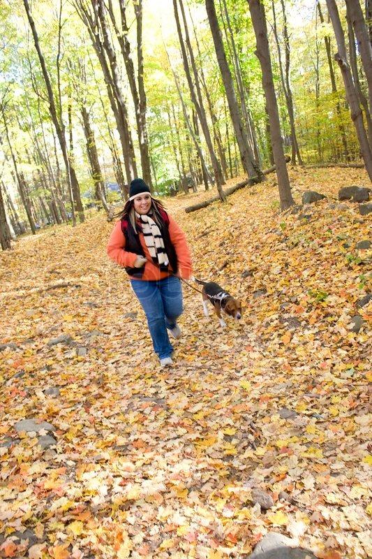 Stock foto af 'en ung kvinde gå med sin hund gennem skoven'