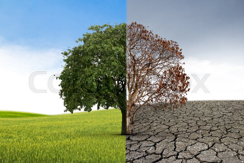 The Concept Of Climate Has Changed Stock Photo Colourbox