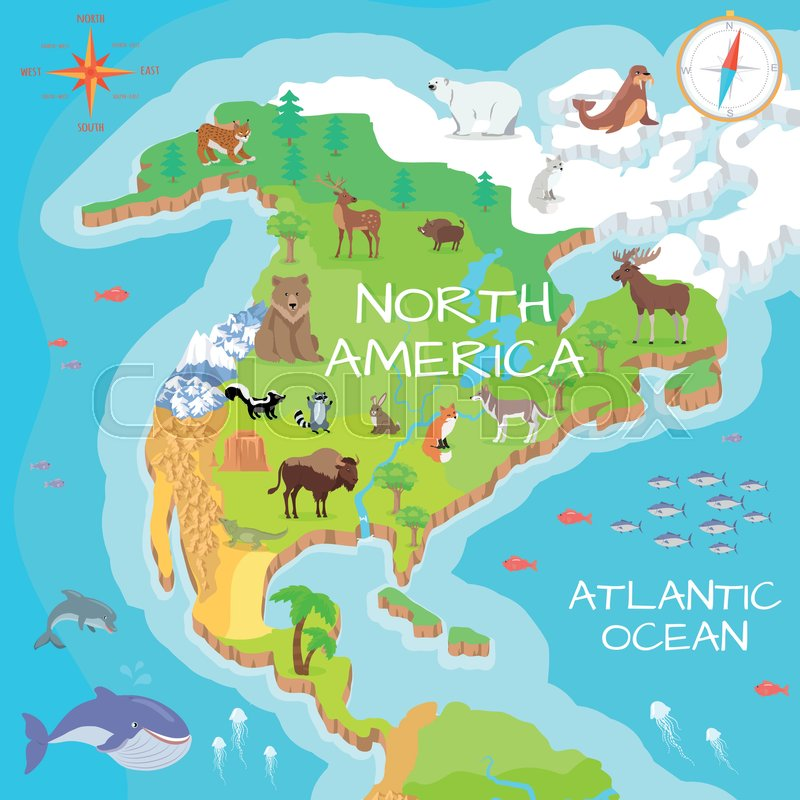 North America isometric map with flora and fauna. Cartography ...