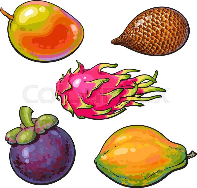 whole mango papaya mangosteen salak pitaya tropical fruit