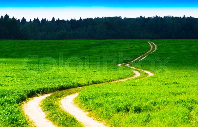 Horizontal winding country road landscape background, stock photo