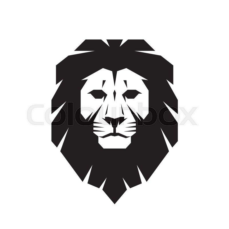 african lion skull  eBay
