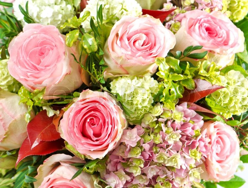 Pink roses. beautiful flowers bouquet | Stock Photo | Colourbox