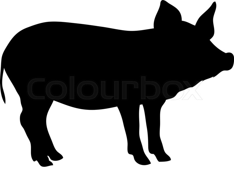 Silhouette pig | Stock Vector | Colourbox
