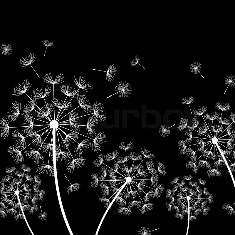 Beautiful Nature Black Background With Stock Vector