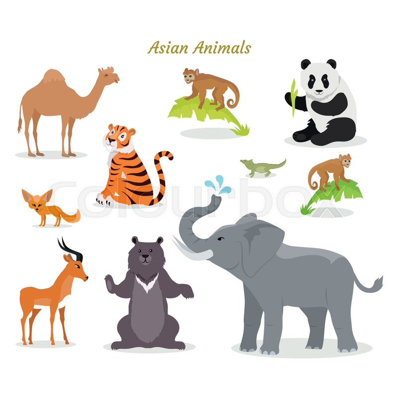 Asian animals fauna species Cute asian animals flat