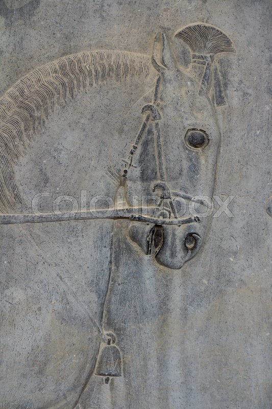 Horse In Persepolis Iran Bas Relief In Stock Image Colourbox