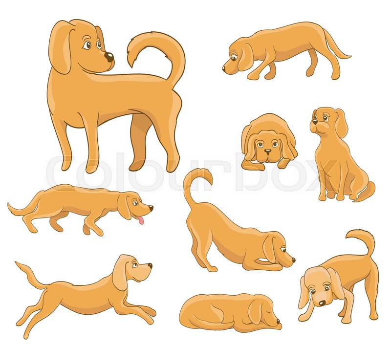 cute cartoon dog in various poses funny pet sitting standing running waiting lying playingsleepy tired vector illustration vector