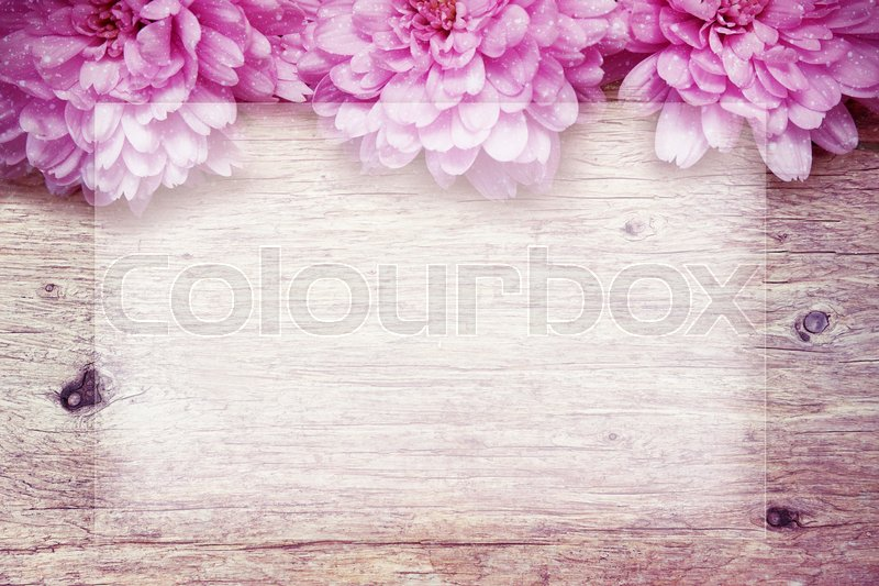 Pink flowers on wooden sparkle background, stock photo