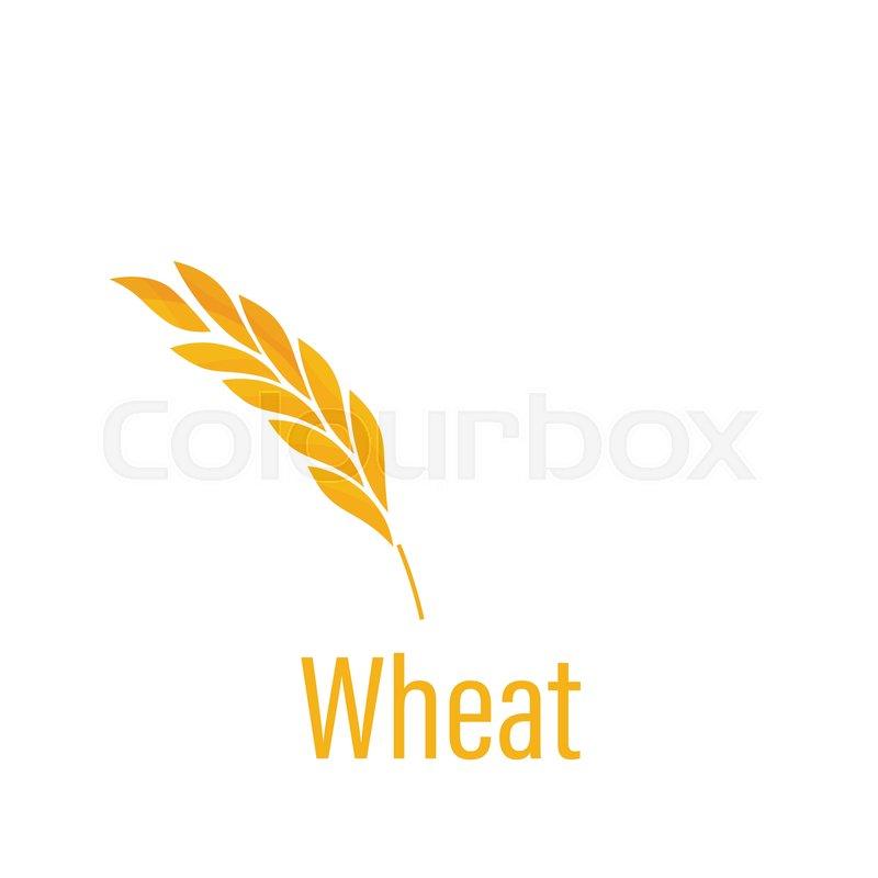 Gluten free icon  Ears of Wheat icon      | Stock vector | Colourbox