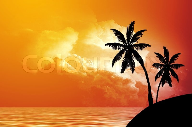 Silhouette Of Palm Trees On Seacoast At Sunset