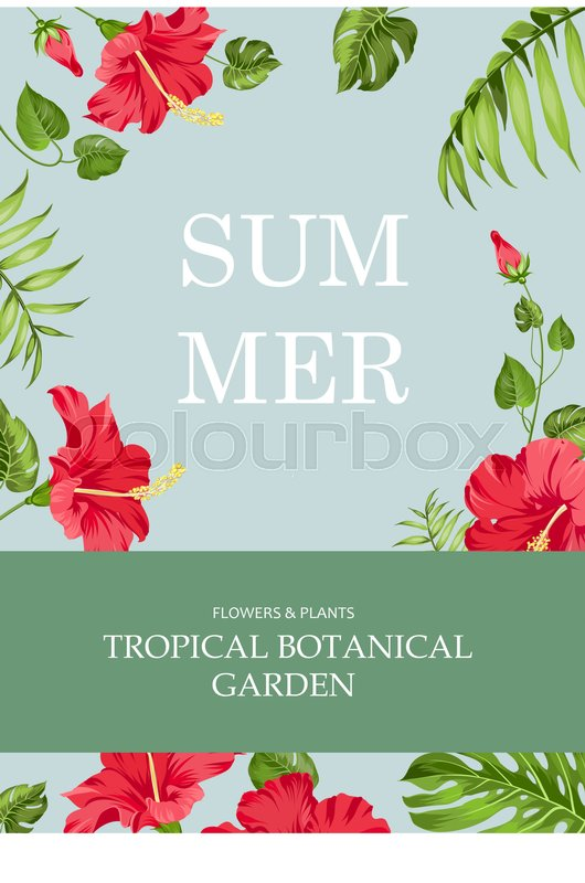 Book Cover Design With Flowers : The book cover summer time and botanical garden text over