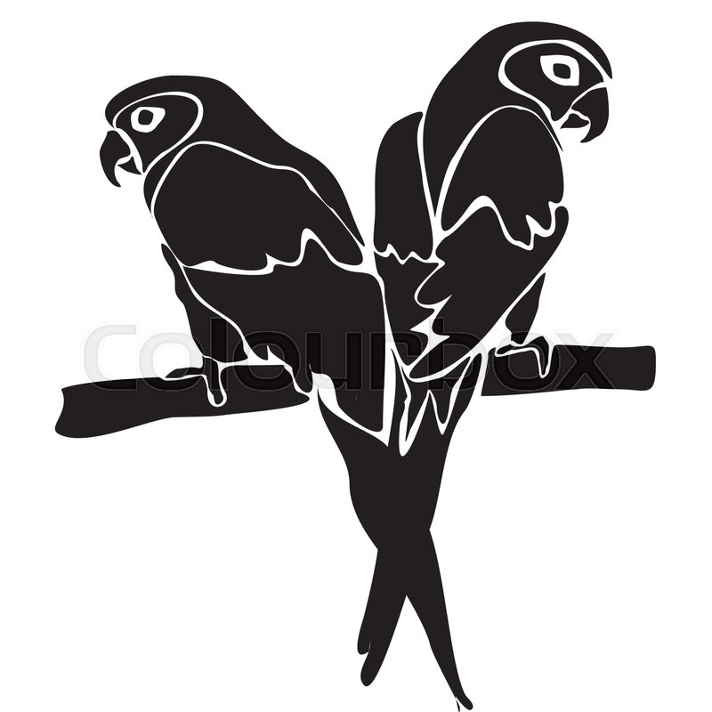 Pair Of Lovebirds On A Branch In Black Stock Vector Colourbox