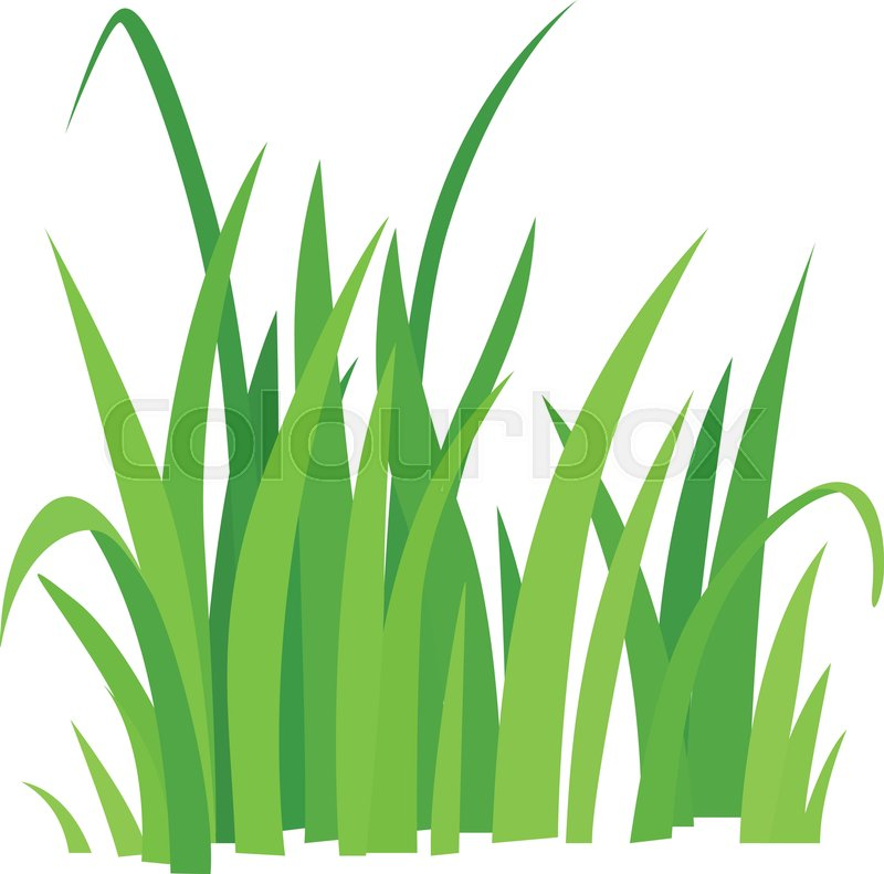 grass icon cartoon illustration of grass vector icon for web rh colourbox com cartoon grass grass cartoon 3d
