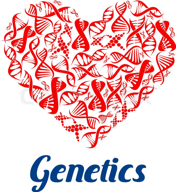 Heart composed of DNA helix. Love genetics poster with red models ...