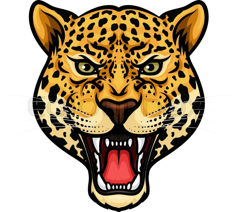 jaguar head isolated cartoon mascot angry leopard or panther rh colourbox com