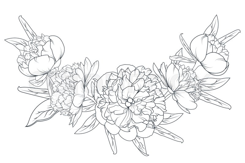 Peony rose flowers laurel foliage garland vector design element peony rose flowers laurel foliage garland vector design element black and white sketch outline drawing spring summer floral romantic vintage bouquet mightylinksfo Images
