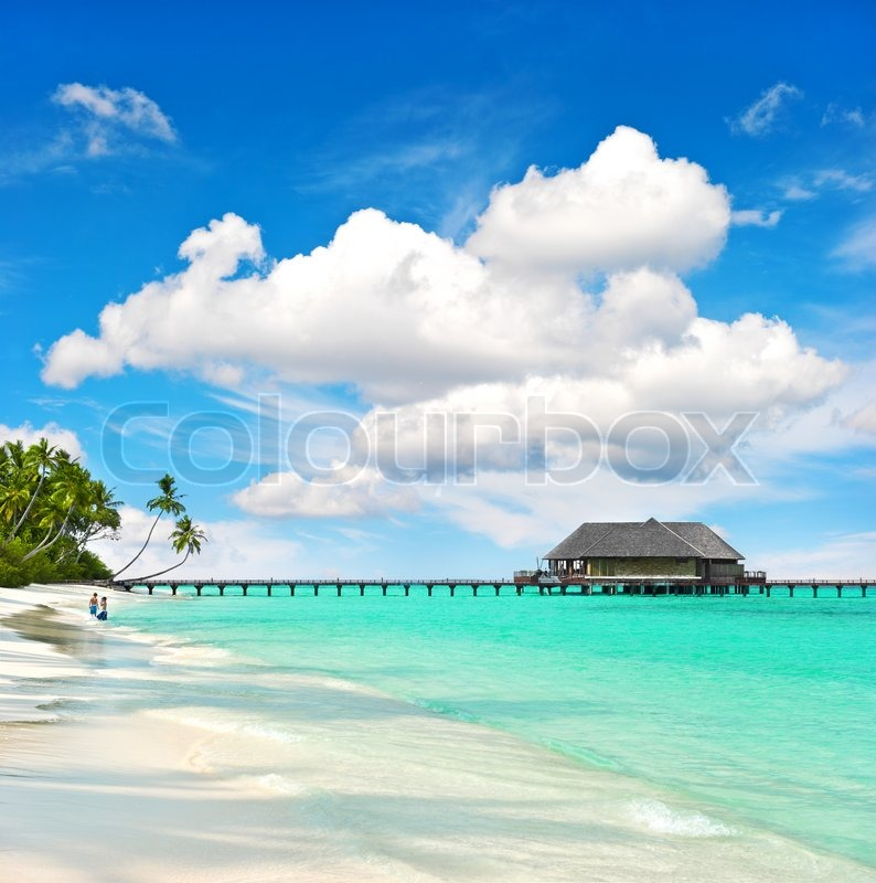 Tropical Island Beaches: Landscape Of Tropical Island Beach With Perfect Sky