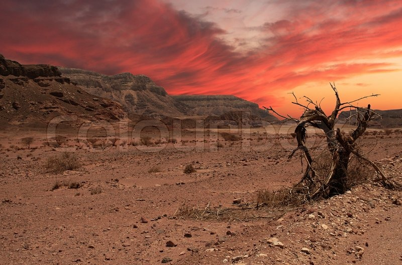 Beautiful sunset in Arava desert,     | Stock image | Colourbox