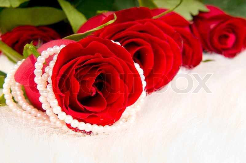 Bouquet beautiful red roses and pearl necklace lay on ...