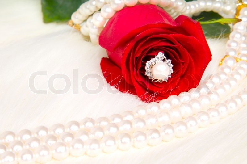 Beautiful red rose and pearl necklace , lay on white to ...