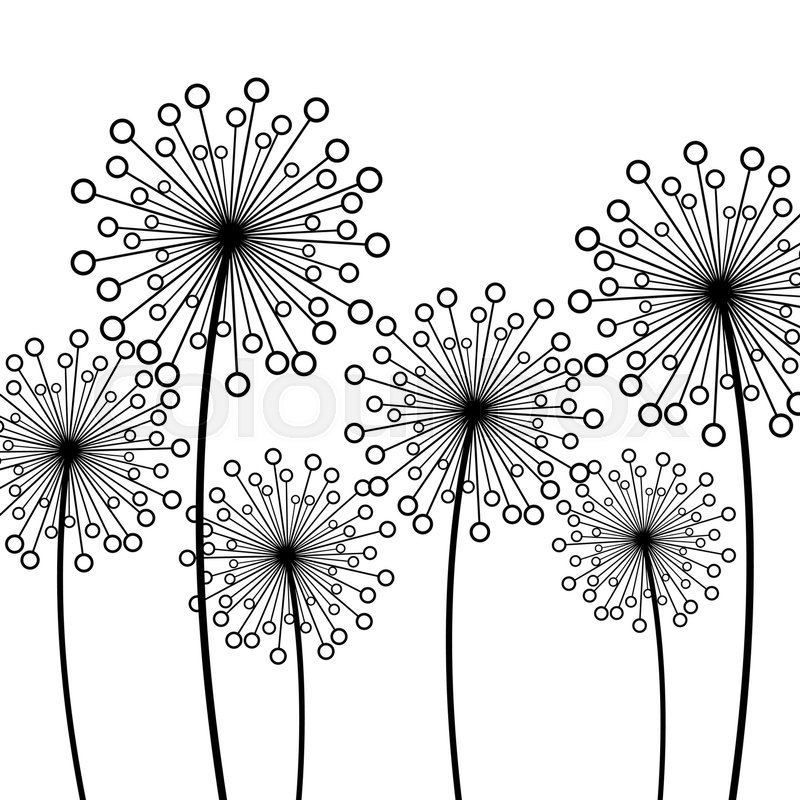 Abstract White Background With Black Stylized Decorative Dandelions Floral Stylish Trendy Wallpaper Summer Or Spring Flowers Modern Backdrop