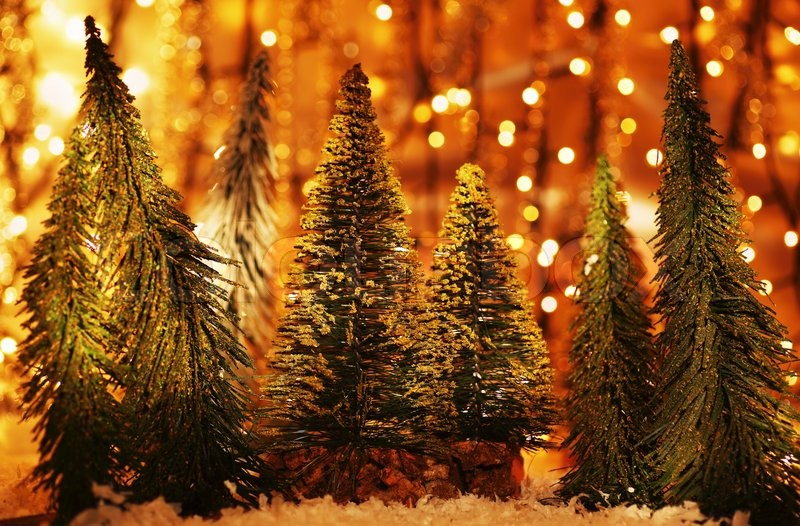 Christmas Holiday Background Photograph By Anna Om: Christmas Tree Forest, Holiday Background With Winter