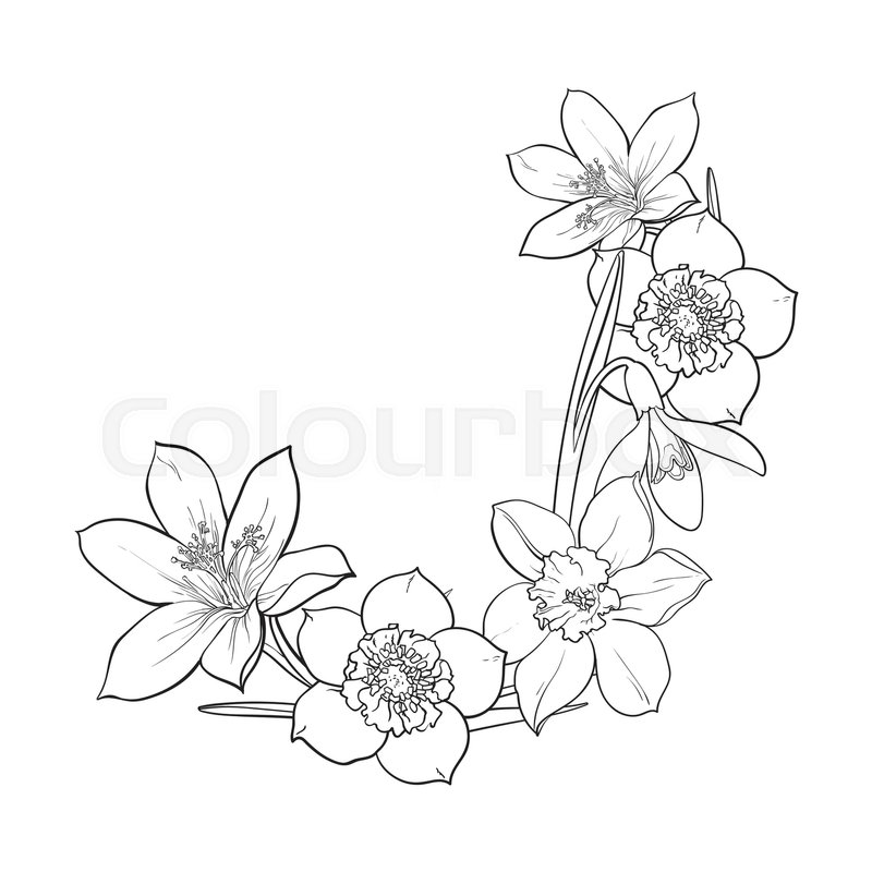 Half Frame Of Spring Flowers Decoration Element Sketch Vector Illustration Isolated On White Background Hand Drawn Realistic Early As