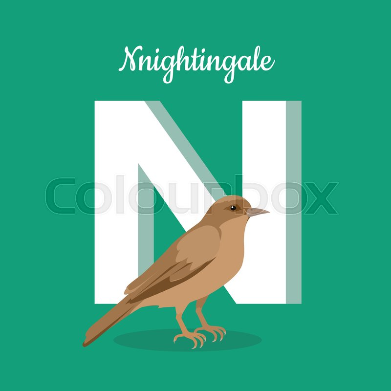 Image of: Zoo Letter N Nightingale Stands Near Letter Alphabet Learning Chart With Animal Illustration For Letter And Animal Name Vector Zoo Alphabet With Colourbox Animals Alphabet Letter N Stock Vector Colourbox