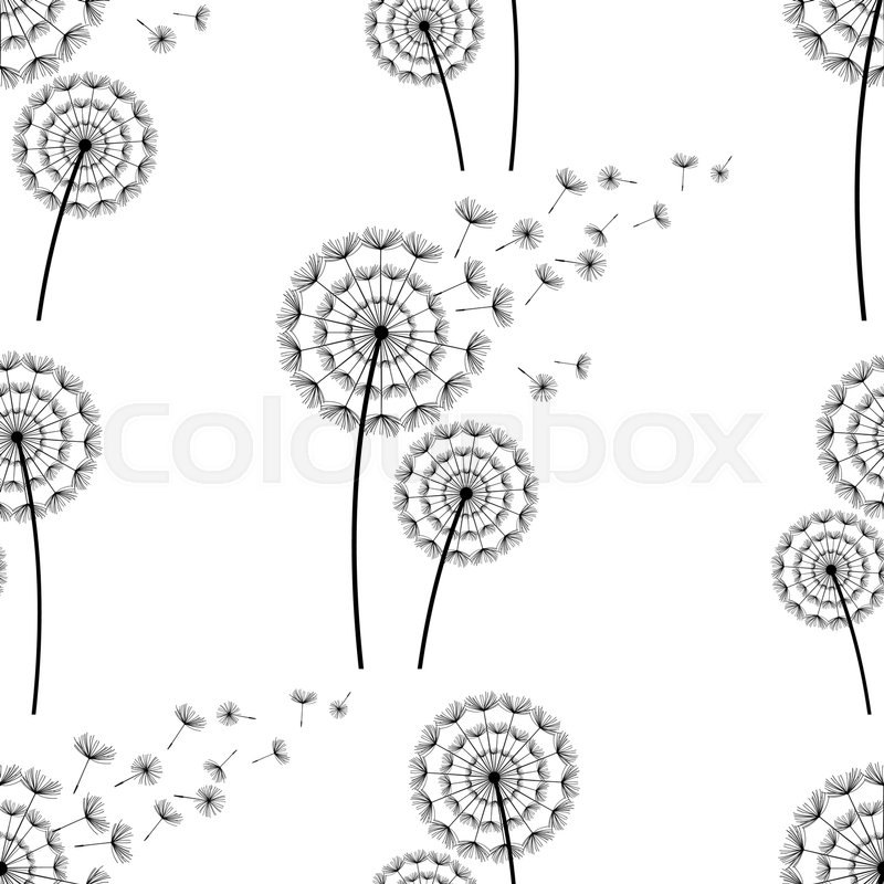 Beautiful White Seamless Pattern With Black Stylized Dandelion Silhouette And Flying Fluff Floral Light Background Spring Or Summer Flowers