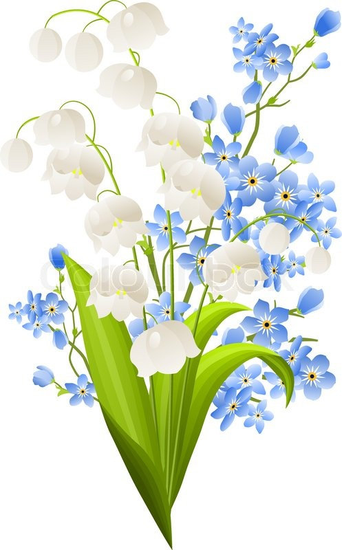 Lilies Of The Valley And Blue Flowers Stock Vector Colourbox