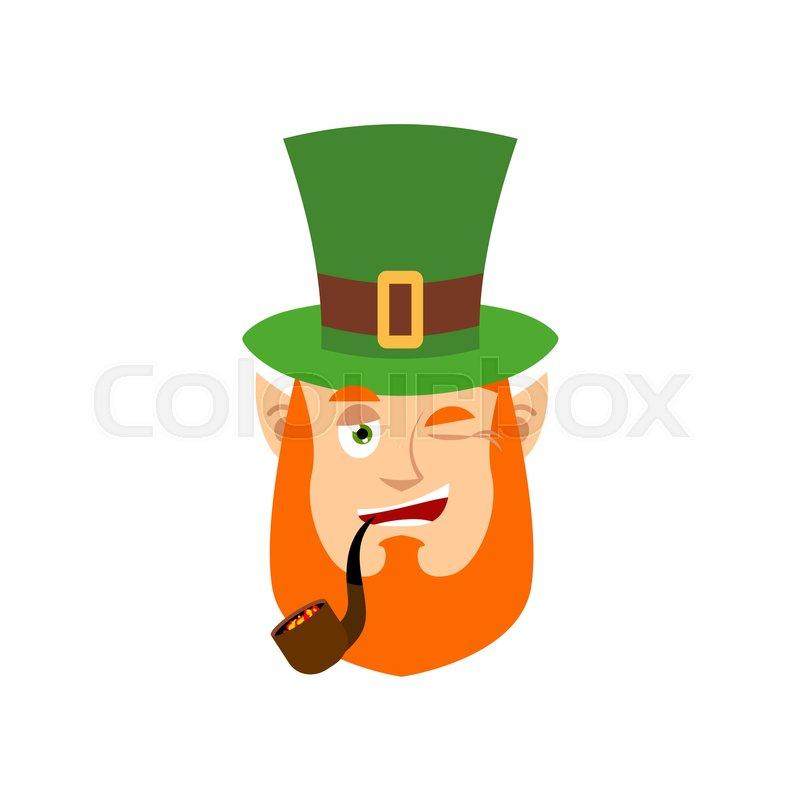 be1ac4951df01 Leprechaun winks. Dwarf with red beard ...