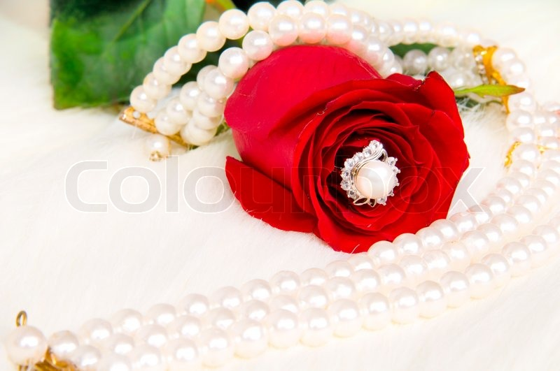 Beautiful red rose and pearl necklace , ... | Stock Photo ...