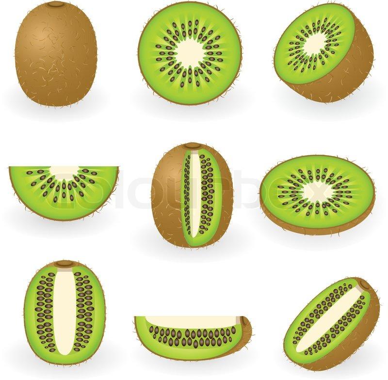 Kiwi Slice Illustratio...