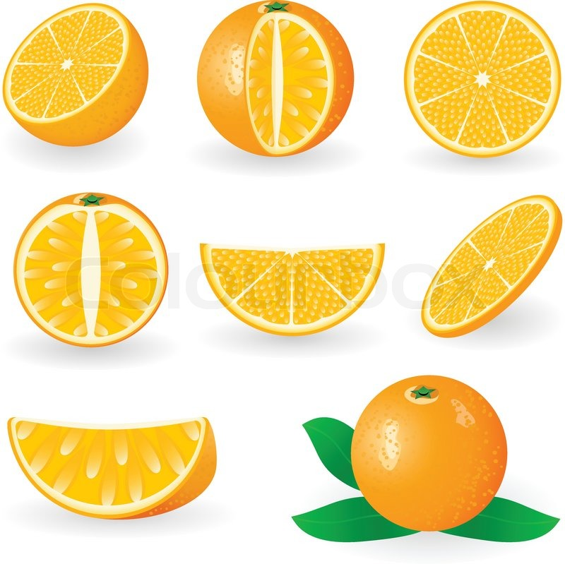 Orange Fruit Vector Vector illustration of...