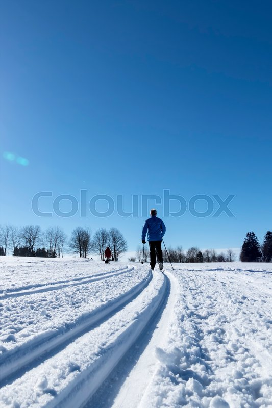 Winter sports cross-country skiing, icon sports, winter vacation, leisure, activity, stock photo