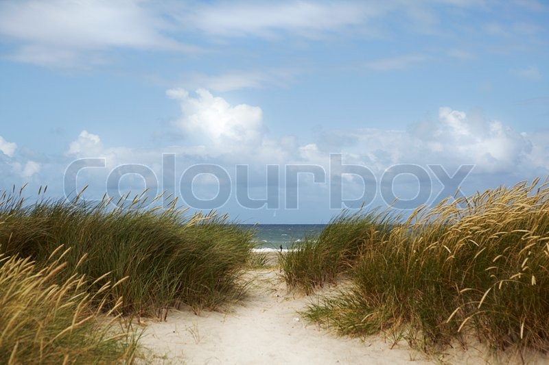 Horizon Over Water with Sand Dune and sky, stock photo