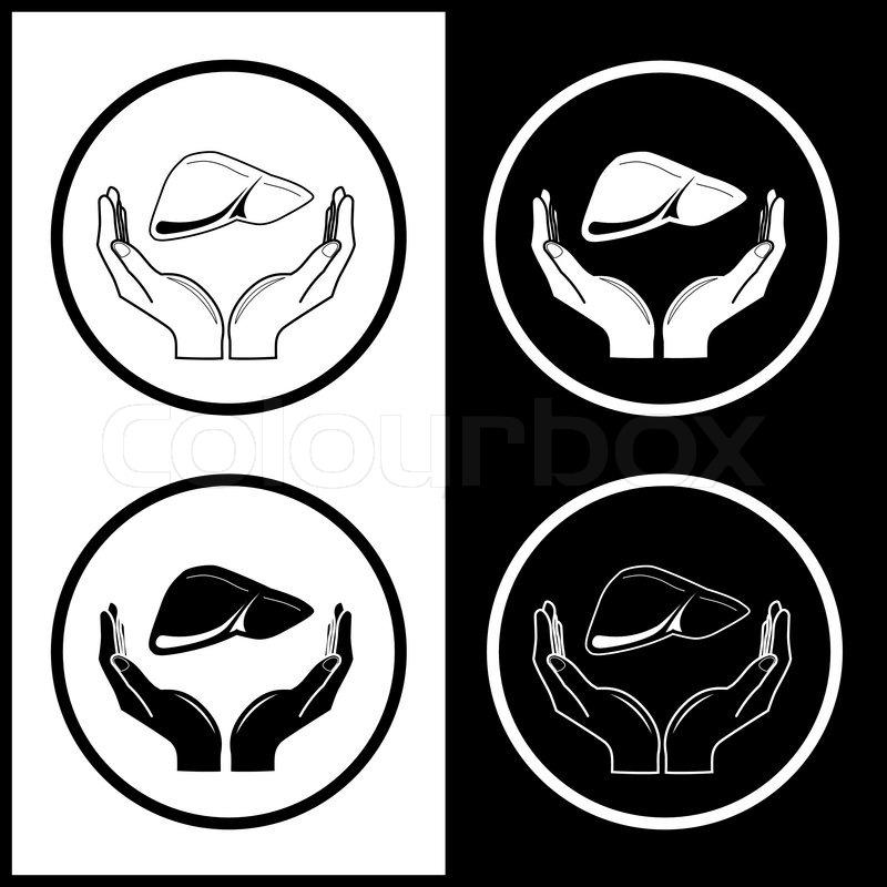 Vector medicinsk ikoner Beskyttelse af leveren | stock vektor | Colourbox