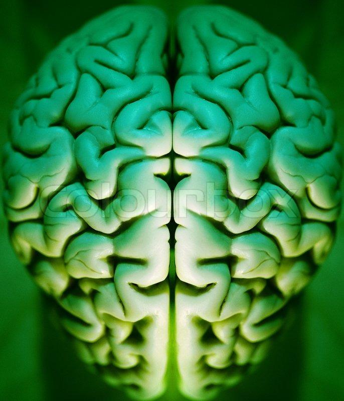 Das menschliche Gehirn abstrakt, alpha, Anatomie, Kunst , Gehirn ...