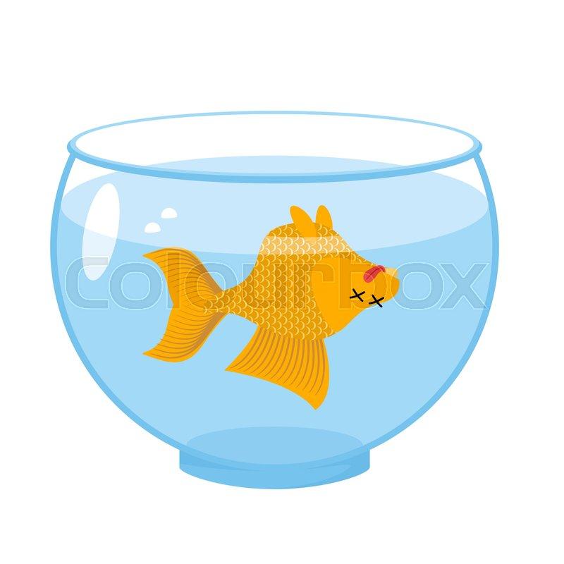 dead gold fish in aquarium sea animal deceased corpse of goldfish rh colourbox com