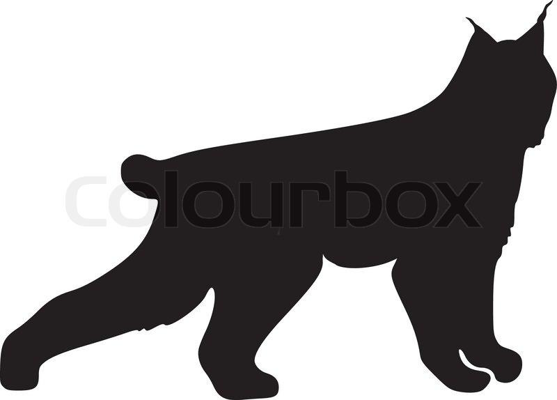 silhouette of lynx stock vector colourbox