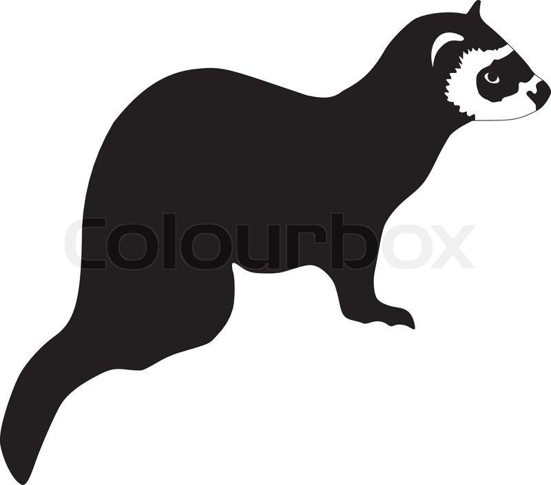 silhouette of ferret stock vector colourbox ferret clip art cnc black footed ferret clipart