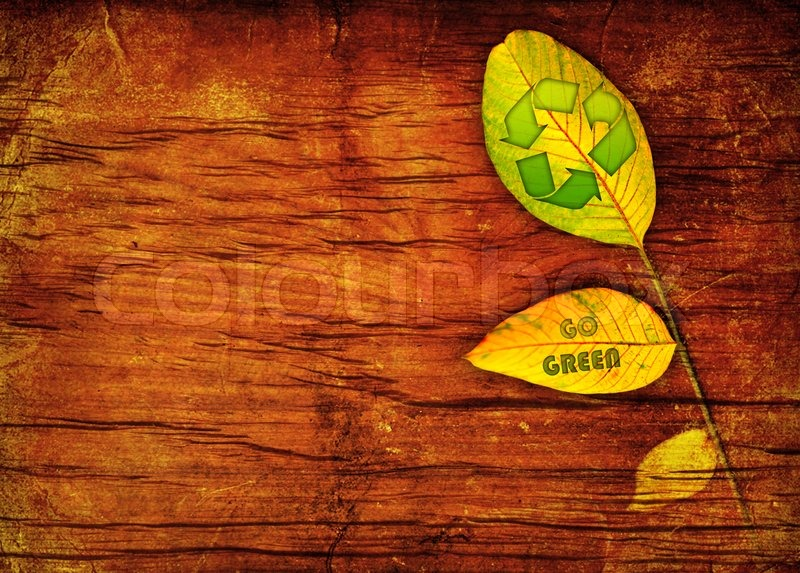 Recycle symbol on the leaf wooden background | Stock Photo ...