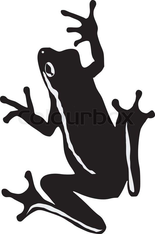 tree frog stock vector colourbox rh colourbox com Red-Eyed Tree Frog Purple Tree Frog
